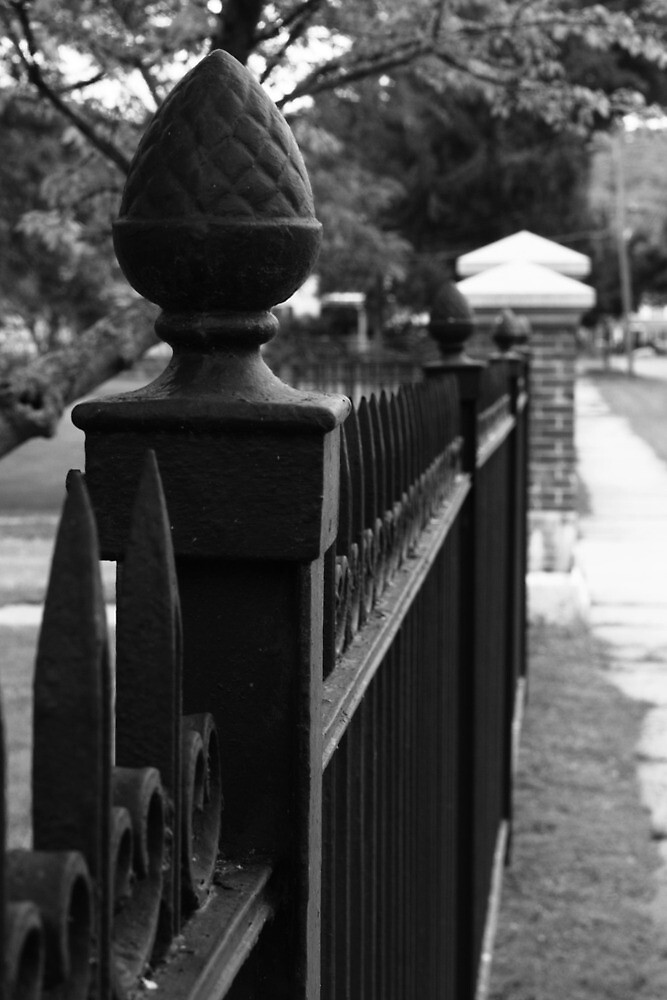 Cemetry Gates by Mike Friedman