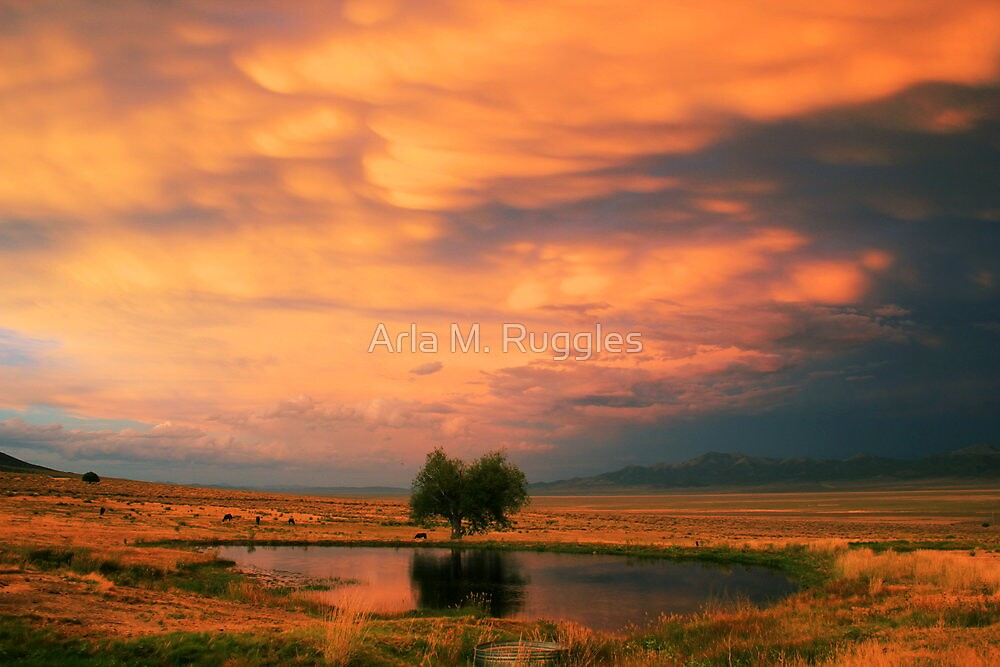 Twilight Rolling In by Arla M. Ruggles