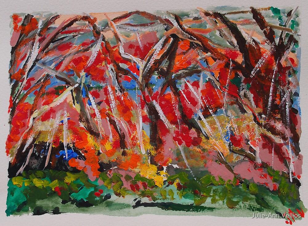 Mount Wilson - 3 by Julie-Ann Vellios