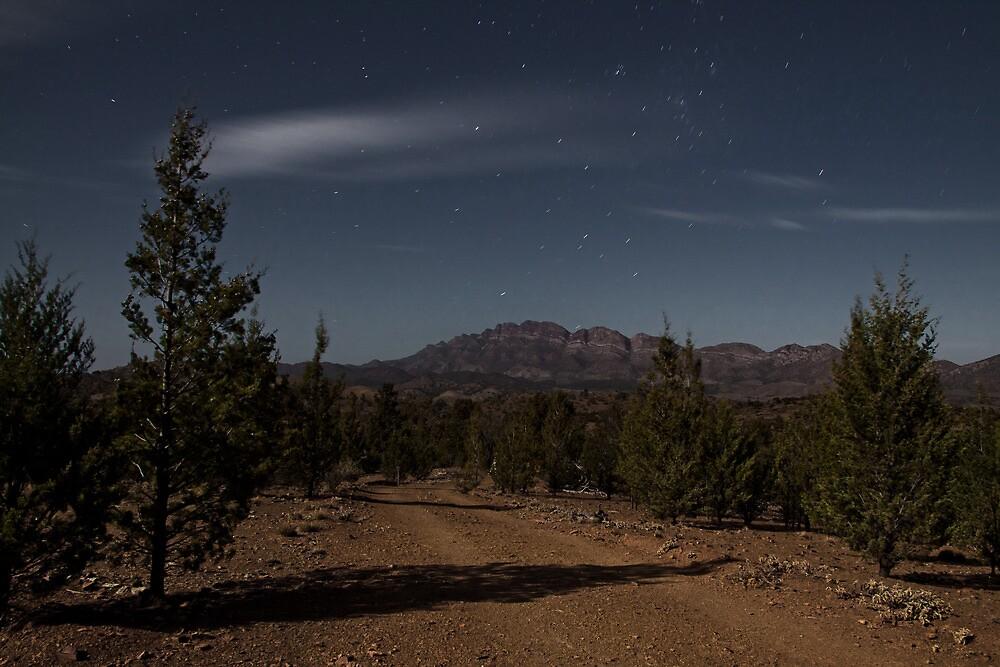 Elder Range in Moonlight by pablosvista2