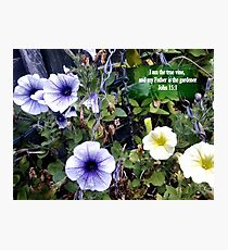 Clematis in basket. MESSAGE OF THE CREATOR. TEXT/BESPOKE Photographic Print