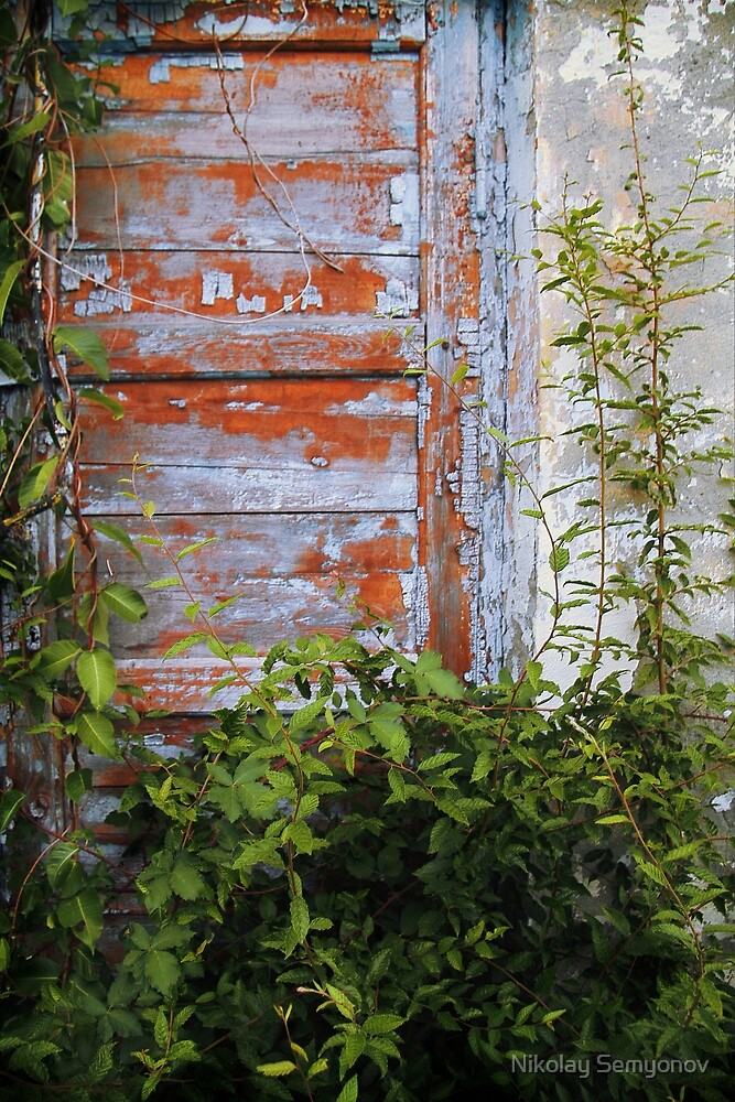 secret doors 6 by Nikolay Semyonov