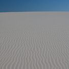Sand Dunes - Hawks Nest New South Wales by Graham Lawrence