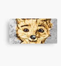 Different Kind of Fox Canvas Print