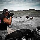 Photographing buffalo South Dakota by David Owens