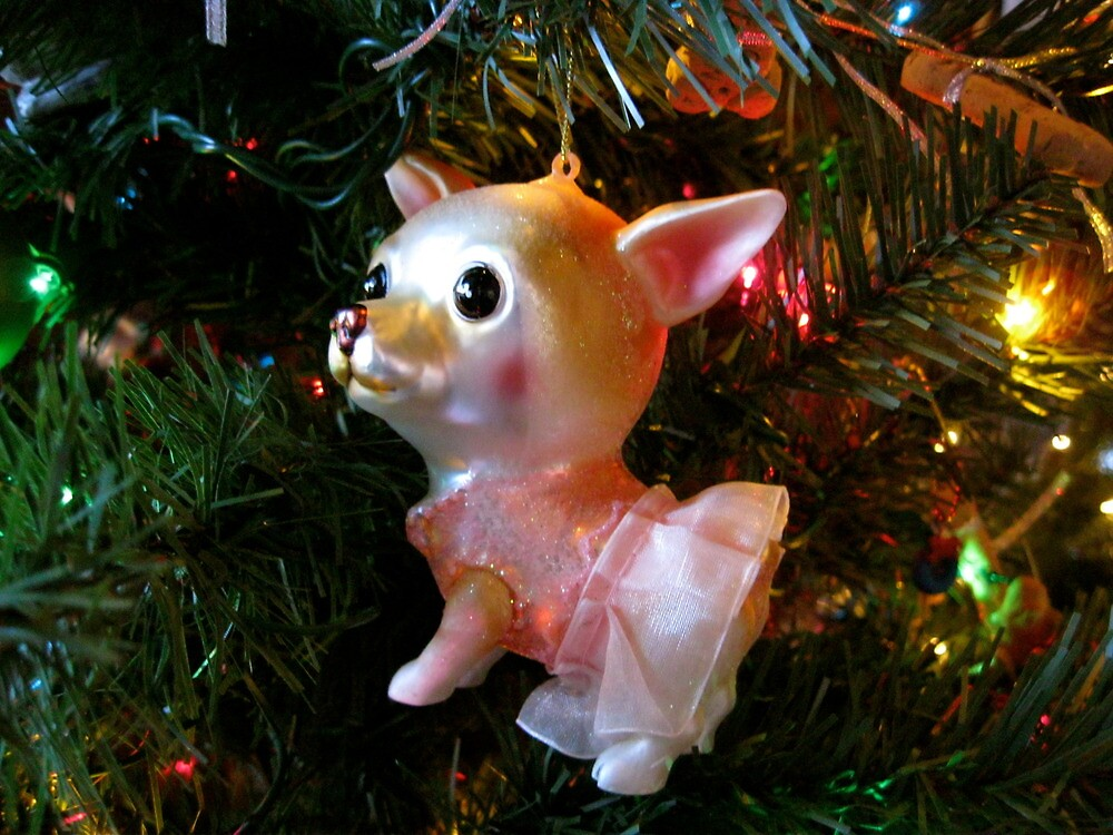 Chihuahua Christmas by Michelle Izzo White