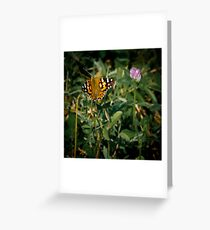Couleurs Greeting Card