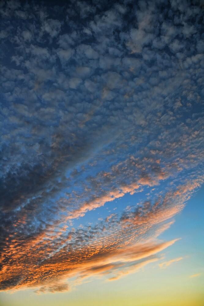 Cloud 20100805-110 by Carolyn  Fletcher