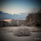 Winter Snow by M.  Photography