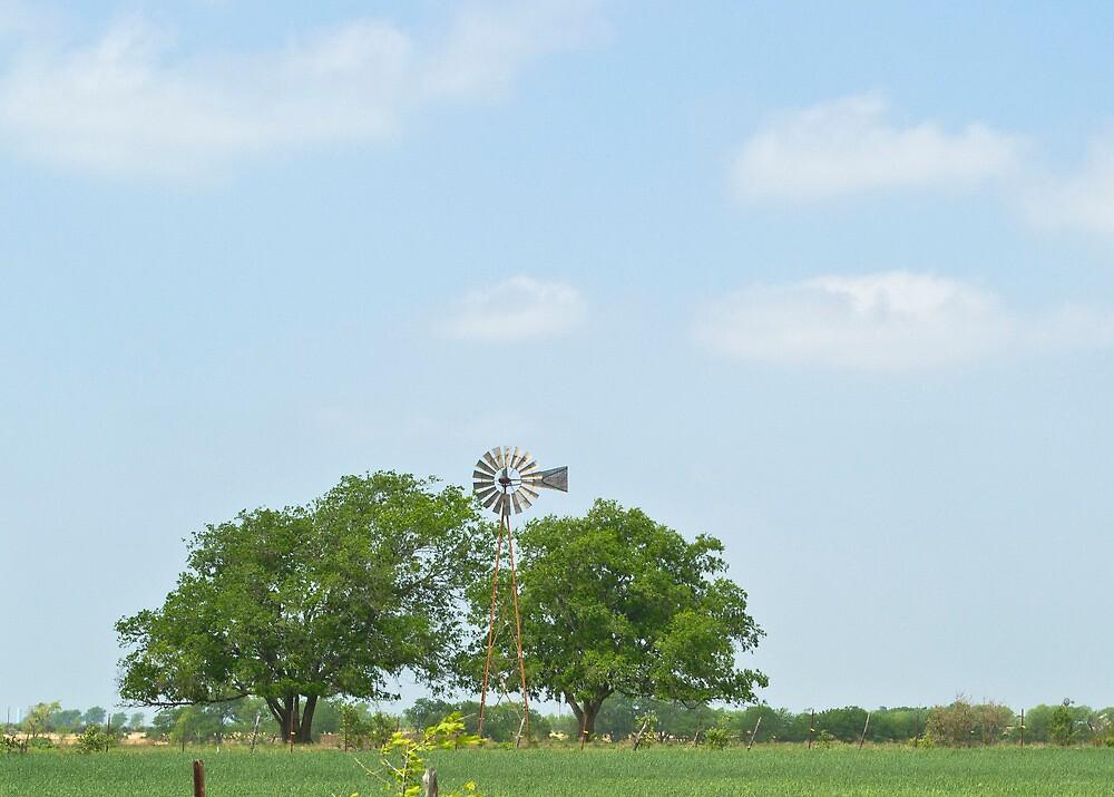 Big Sky by treedixon
