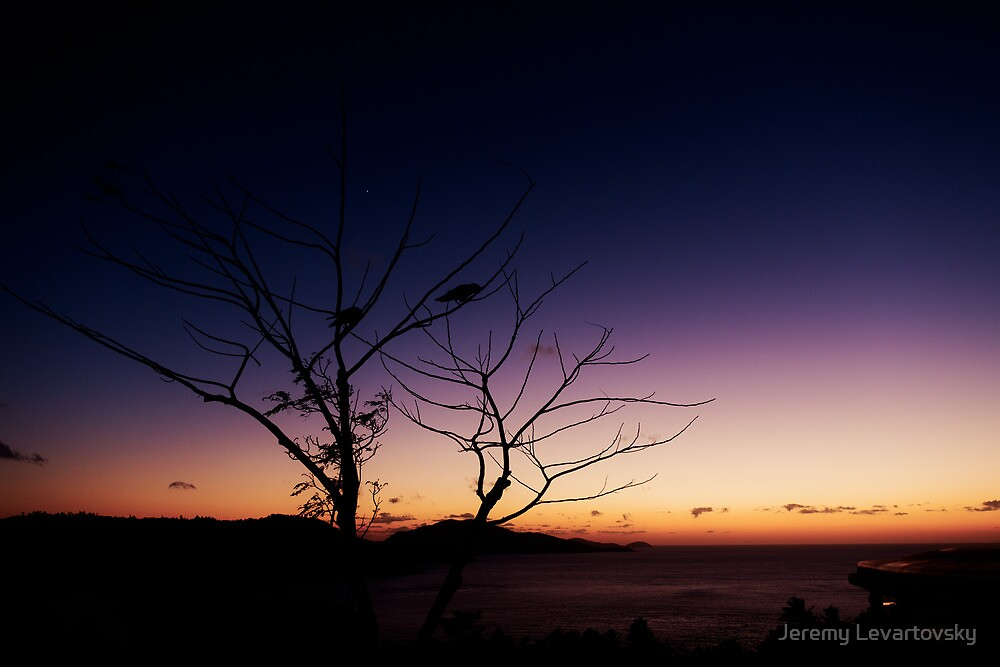 Pair on One Tree Hill by Jeremy Levartovsky