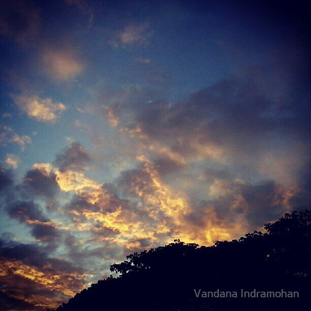 Fire in the Sky by Vandana Indramohan