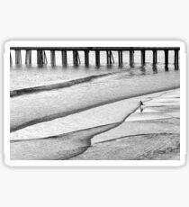 Skim Surfing Sticker