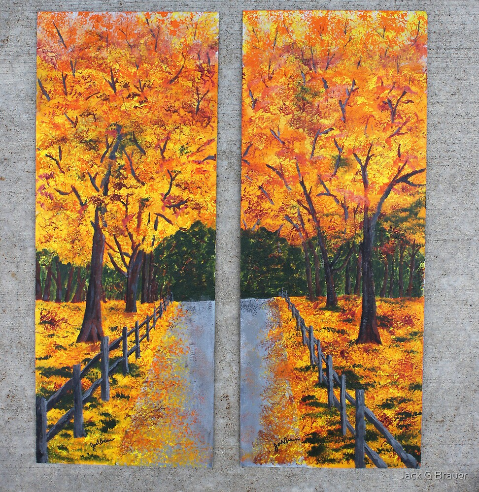 Sugar Maple Tree Trail by Jack G Brauer