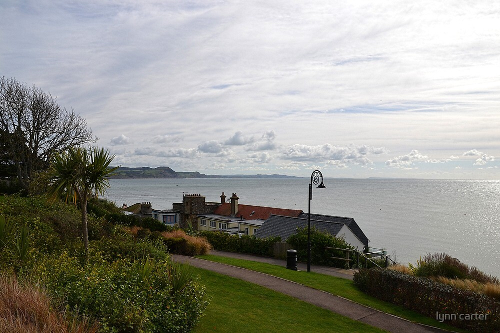 View From  Lyme Gardens by lynn carter