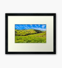 Green Meadow, Santa Ynez valley, CA Framed Print