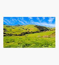 Green Meadow, Santa Ynez valley, CA Photographic Print