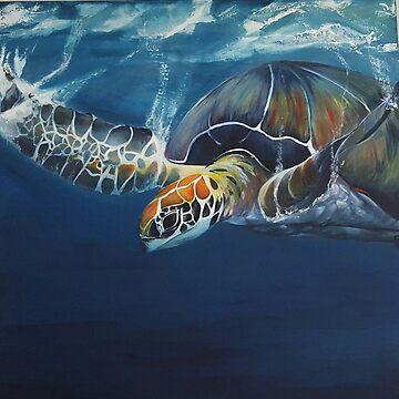 Turtle by Rachel3