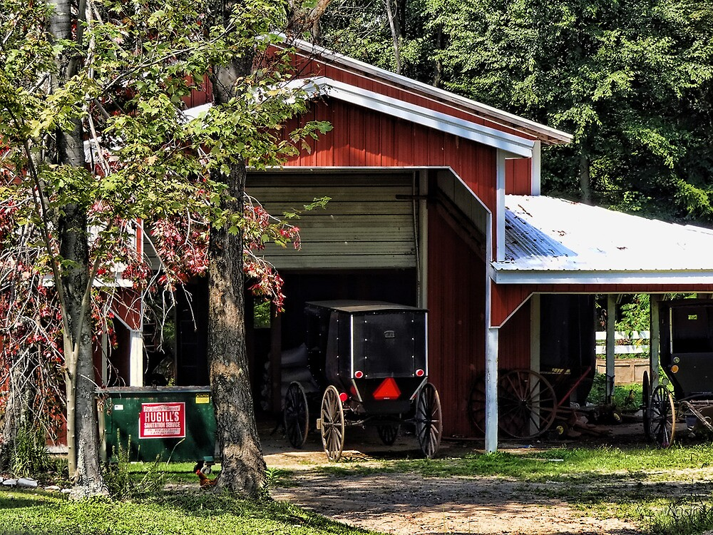 Two buggy garage by vigor