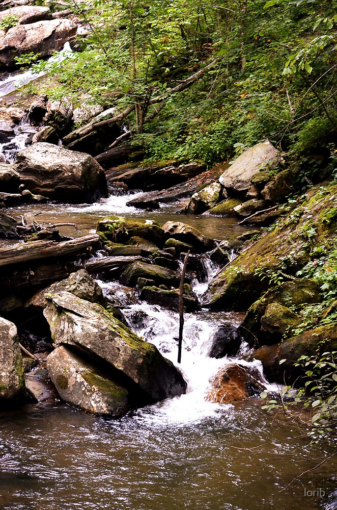 The Creek by lorib