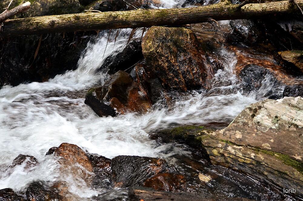 Raging Water by lorib