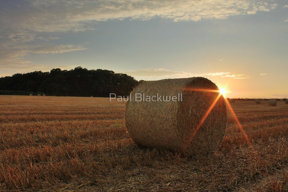 The last of the summer sun by Paul Blackwell