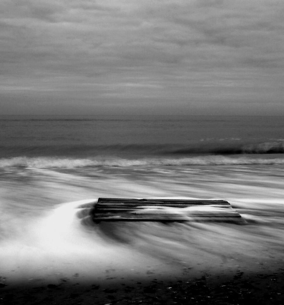 Driftwood by Sophie Lankester