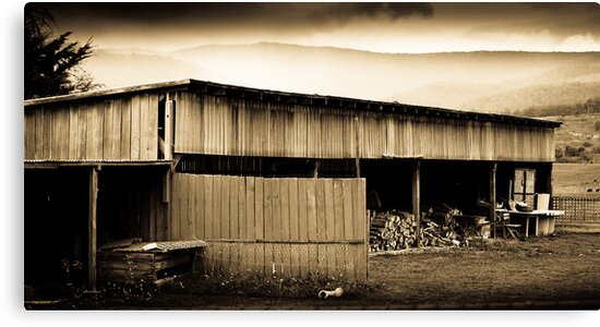 Huon Valley Wood Shed - Tasmania by Chris Sanchez