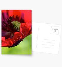 Poppy. Postcards
