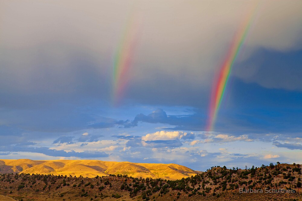 Golden Hills With Rainbow by Barbara Schultheis