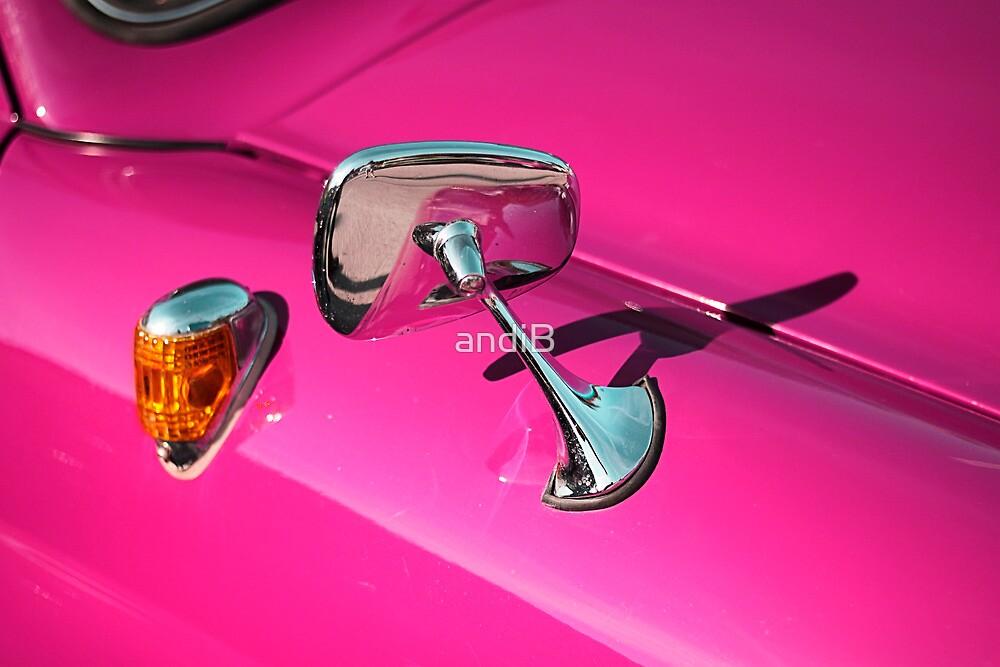 Pink by Andreas  Berheide