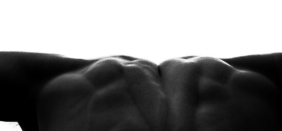Swimmer - Back Muscles by Robby Ticknor