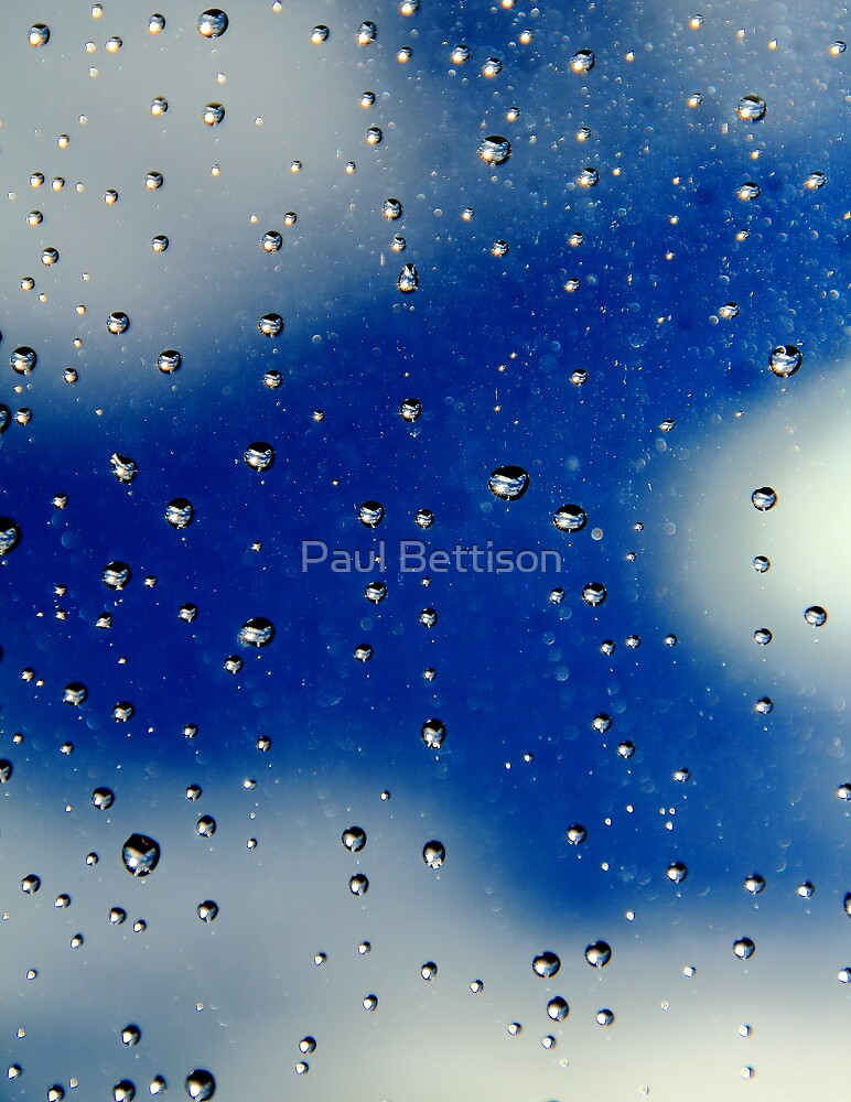 Raindrops by Paul Bettison