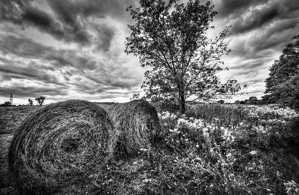 Fall Hay by Jeff Smith