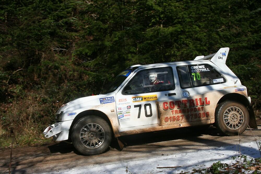 Wyedean Rally 2012 by Steve-Williams