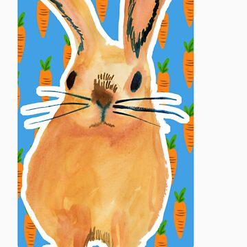 Mr bunny by pondicherrybaby