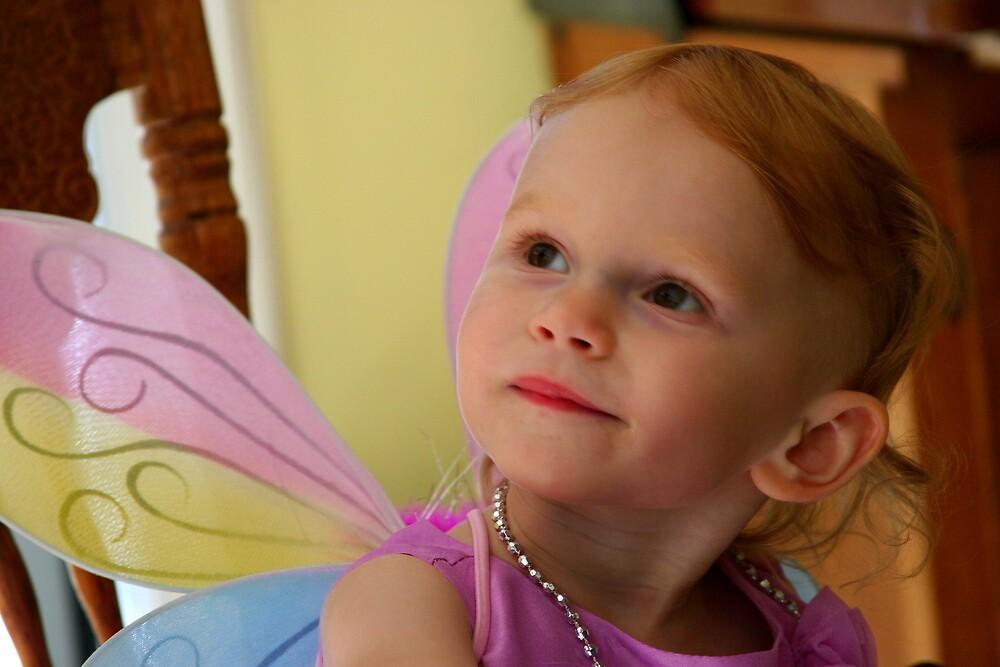 A Real Fairy Princess by Paula Tohline  Calhoun