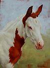 Pretty Baby-Paint Foal Portrait by Margaret Stockdale