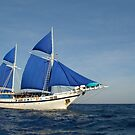 Palau Siren off Sangeang Island, Indonesia by Andrew Trevor-Jones