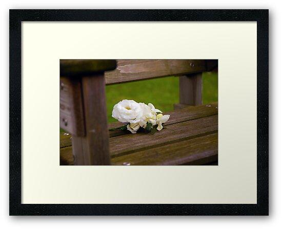 Buttonhole Rose by katbphotography