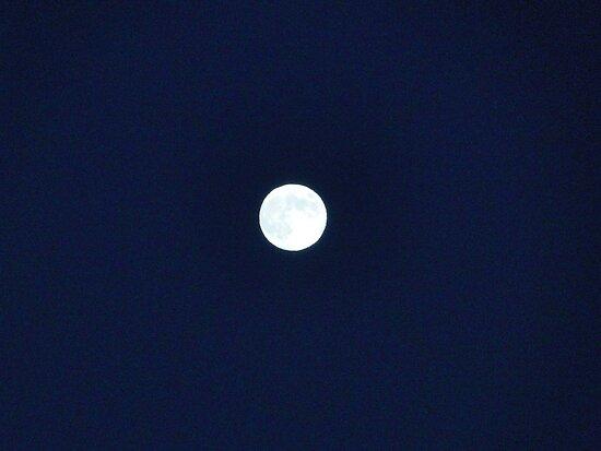 The Moon by Alexa A