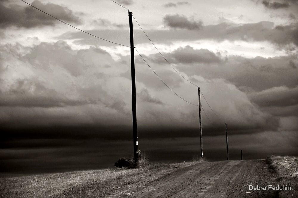 We're not in Kansas Anymore by Debra Fedchin