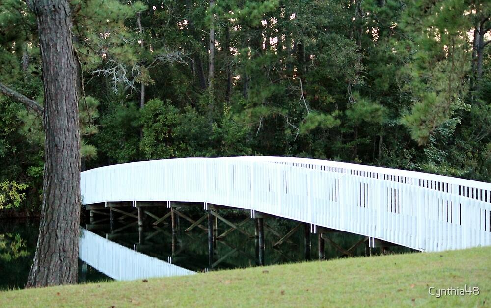 Long White Bridge by Cynthia48