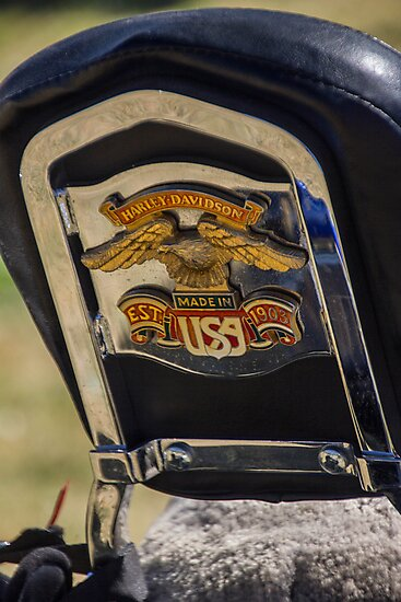 Harley Davidson On The Back by Mandy  Harvey
