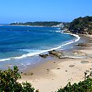 Looking Over Jenny Dixon Beach. by Anthony Keevers