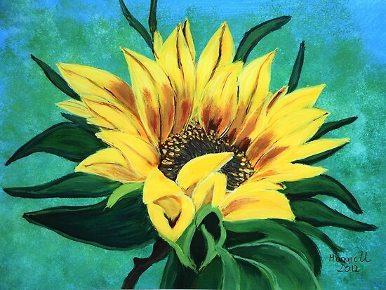 Sunflower looking up by maggie326