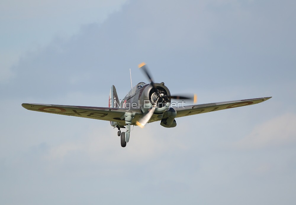 Curtis Hawk 75A by Nigel Bangert
