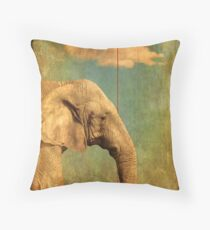 Alone In My World Throw Pillow