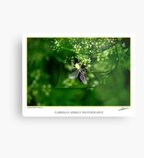 A matter of life and death Metal Print
