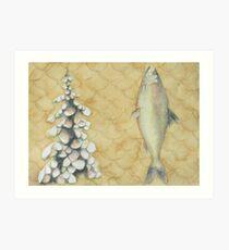 Trout, Pine, Scale Art Print